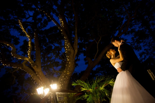 want to get married under a tree of fairy lights? ask me wher in your area has one.